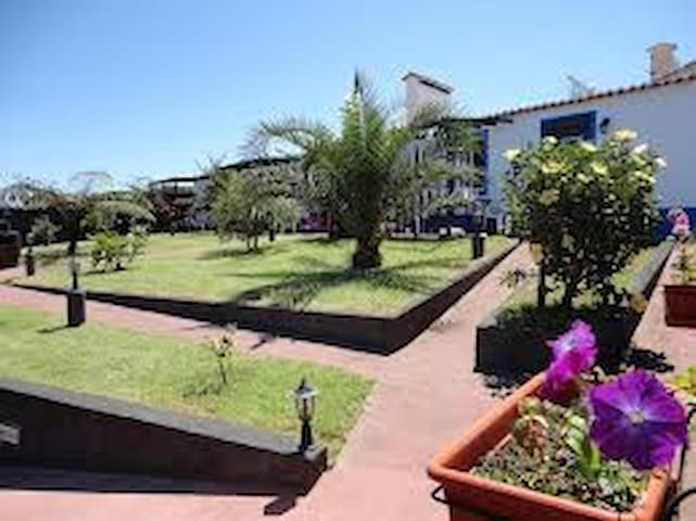 Casa Magnólia - Ponta Delgada  - Дом