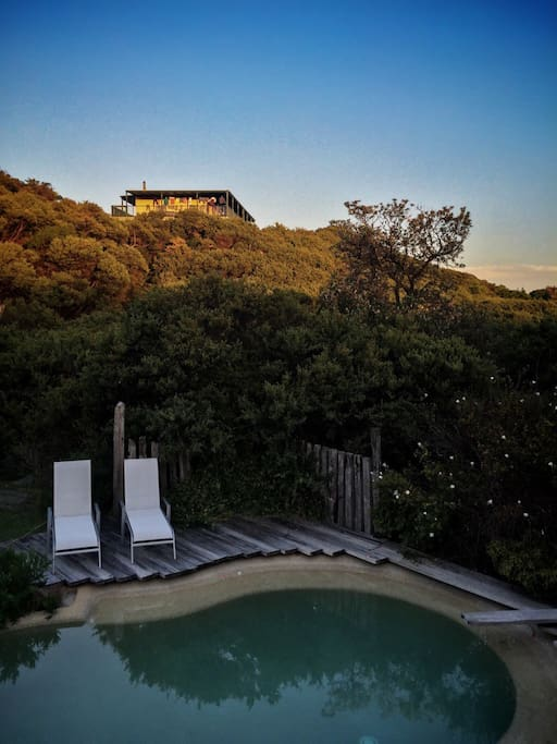 Pool set in native tea tree environment amongst the sand dunes of Venus Bay.