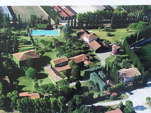 Dimora felix - Matinella - Villa