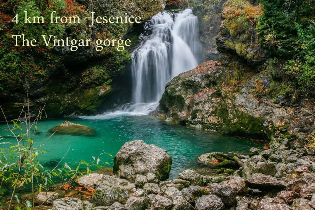 Worlds famous Vintgar gorge just 4 km from our house