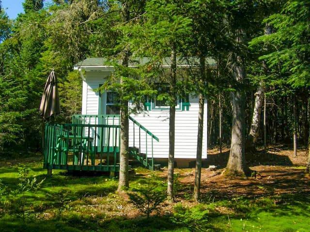 ♥★Paisible refuge en forêt | foyer au gaz et spa★♥