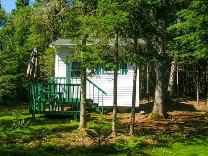 ★♥Peaceful glamping experience  | Dream, Escape♥★