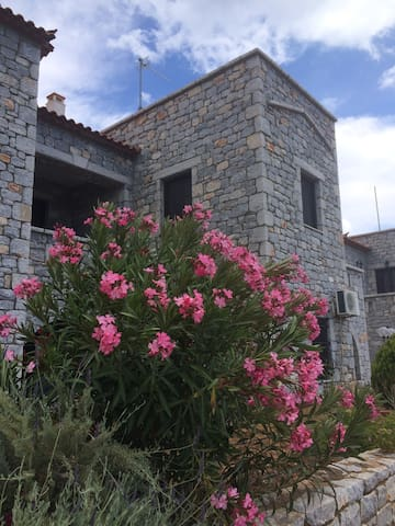 Stone house -Petra - Mavrovouni - Appartement