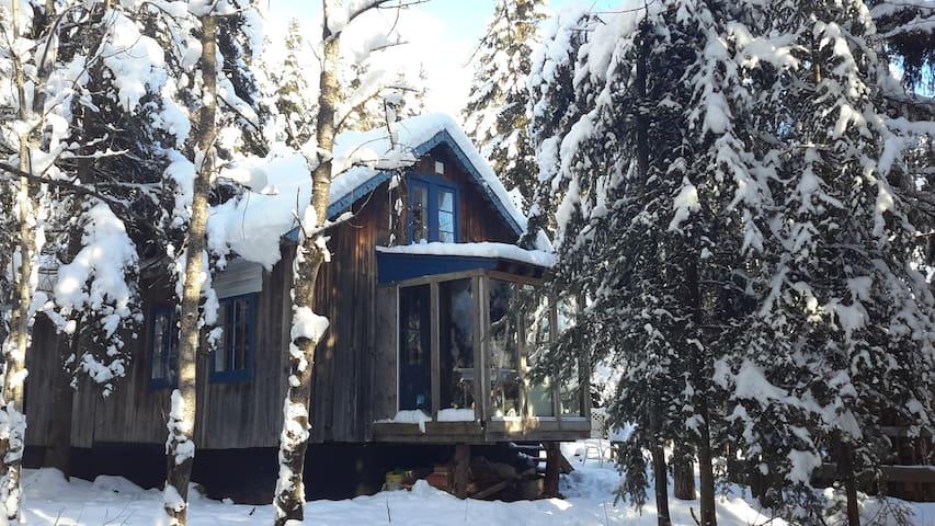 cabin in the woods - Sainte-Euphémie - Бунгало
