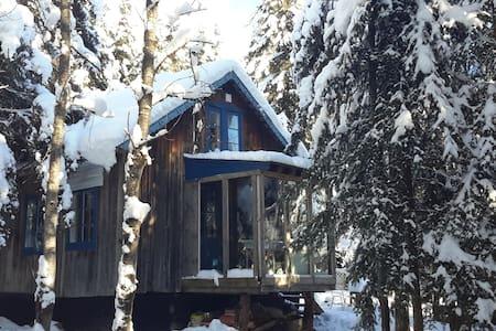 Cabane dans le bois - Sainte-Euphémie