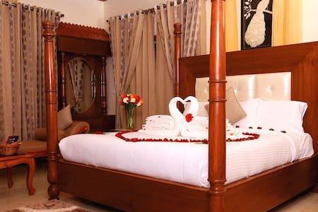 Honeymoon Suite ( Love Birds )