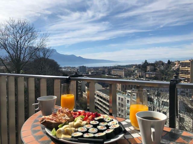 Superbe appartement + balcon avec vue sur le lac !