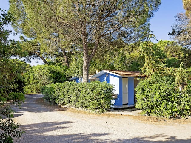 Holiday home for 4 persons in Marina di Castagneto