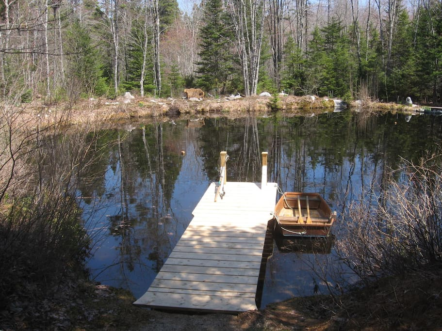 Great view of the 8 foot deep pond. The boat is no longer there as it's started to rot :(