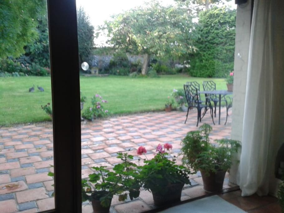 View of garden from sitting room