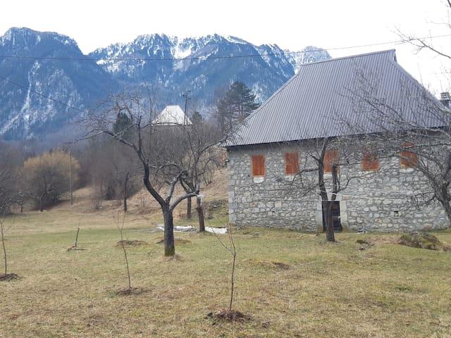 Villa Alexandra  Bistrica