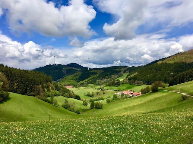 """Jungbauernhof Schwarzwald  Ferienwohnung """"Hof"""""""