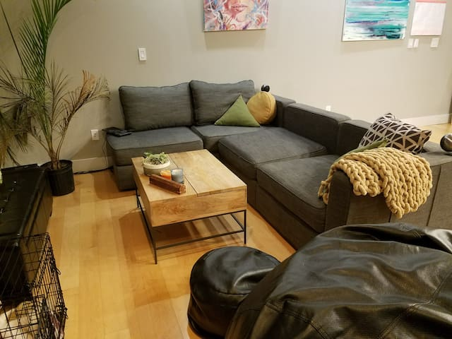 Condo in Bricktown/Downtown OKC. Entire flat! - Oklahoma City - Other