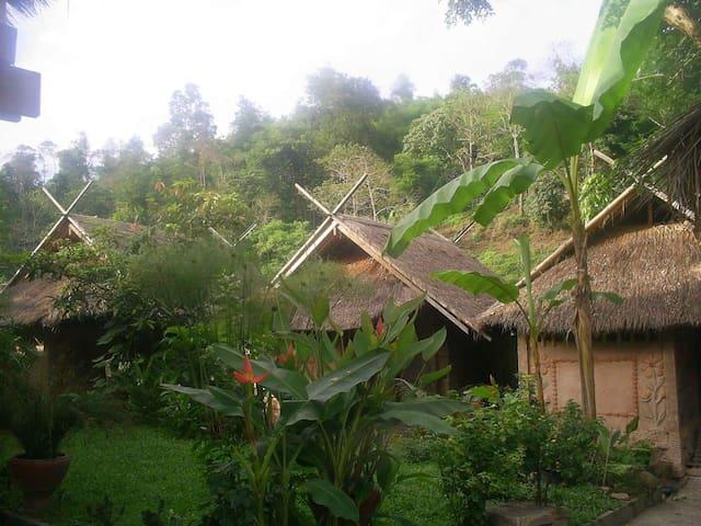 Chiangrai Bamboo House