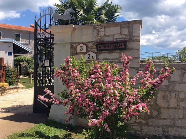Apartmani Villa Allegra - Višnjan - Pis