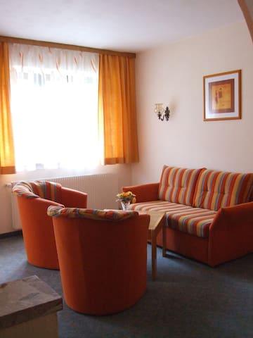 gezellig, comfortabel appartement - Badgastein - Apartamento