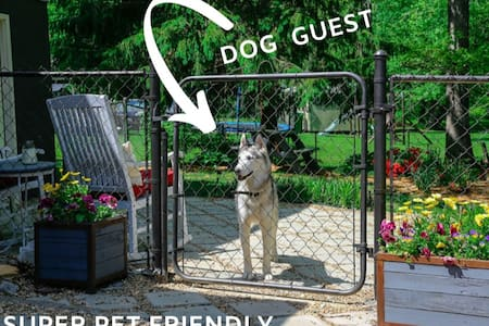 Houz Zen: A Pet Friendly Private Suite