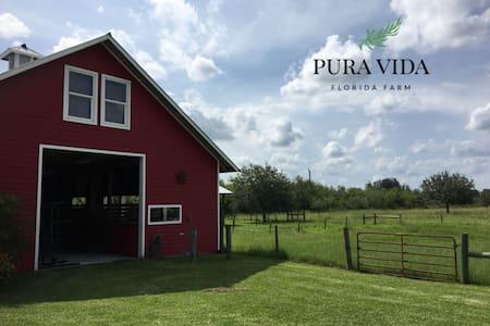 Private Barn Studio at Pura Vida Florida Farm