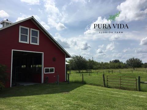 Estudio Granero Privado en Pura Vida Florida Farm