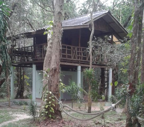 tree house big terrace - Tambon Ko chang noi, Chang Wat Ranong, TH - Treehouse