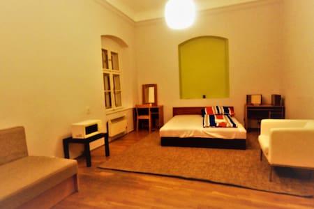 Michael's Gate Central Rooms - Private room No.2 - Bratislava - Apartamento