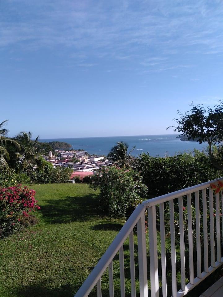 Belle vue mer, grand jardin,  proximité plages