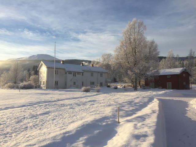 Leilighet i ærverdig gammel gård - Trysil - Apartament