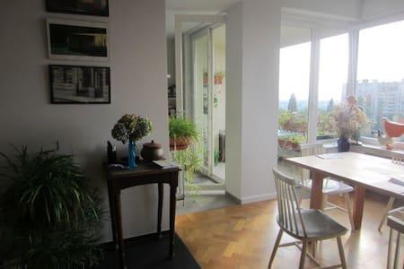 Lumineux et spacieux appartement avec 2 terrasses. - Lägenhet