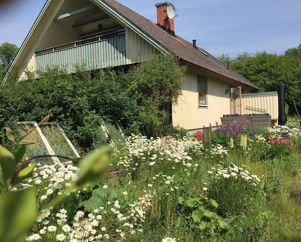 Stor villa med stor solig uppväxt trädgård