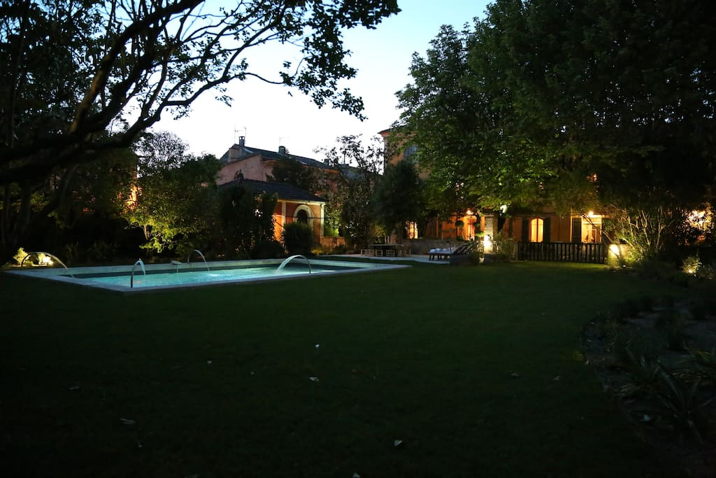 Garden in the evening