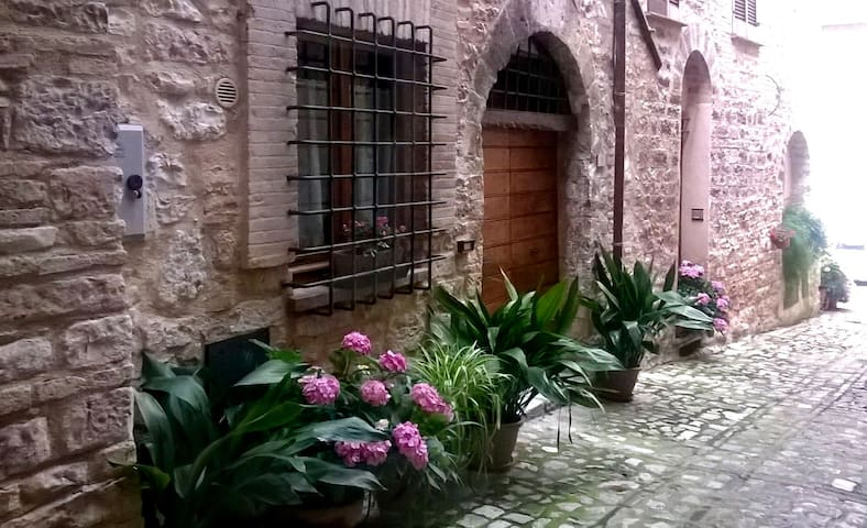 Splendido monolocale, centro storico Spello - Spello - Byt