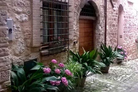 Splendido monolocale, centro storico Spello - Huoneisto