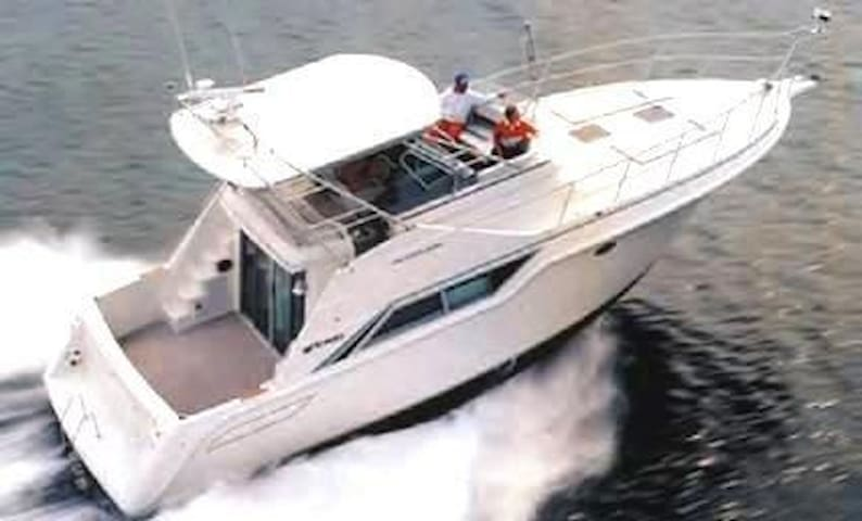 "43' Cruisers Inc ""Mayhem"" ON-THE-WATER lodging!"