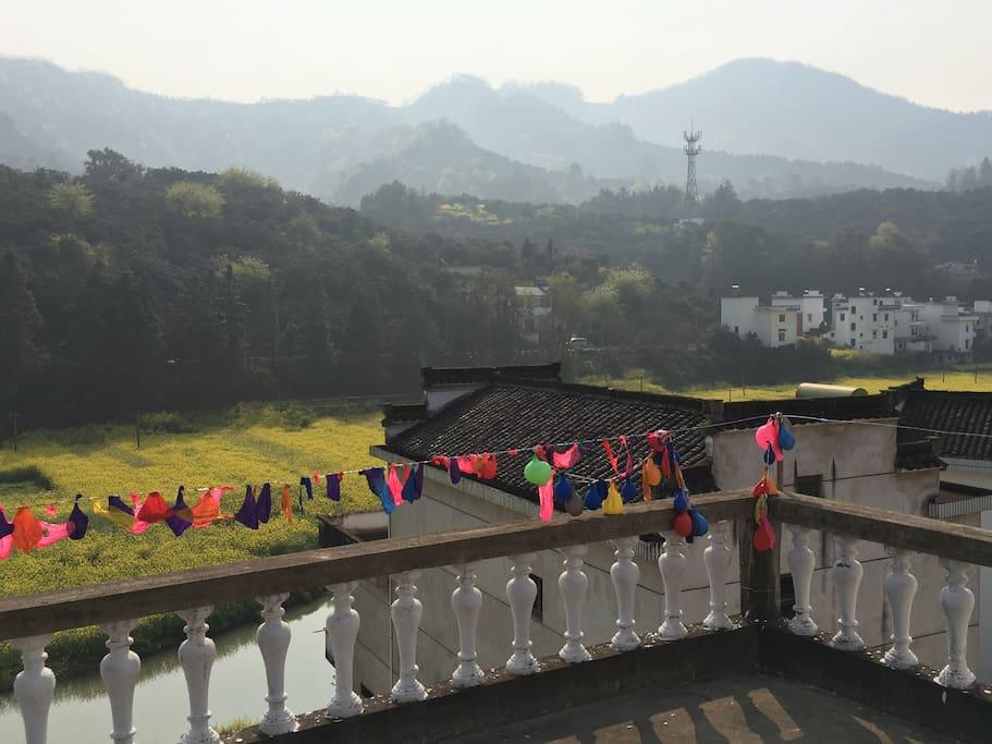 阳台上的风景 View from the balcony