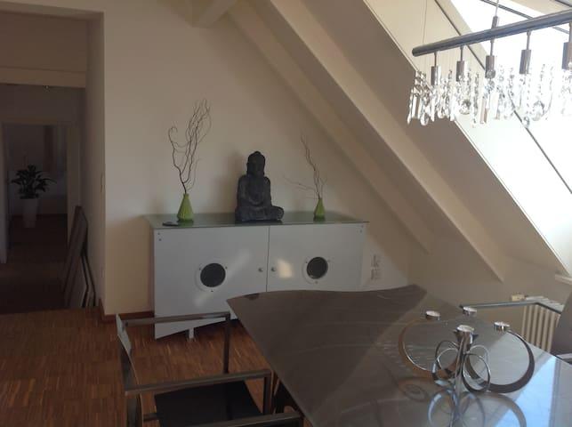Charmante DG-Wohnung, 85qm, Dachterrasse - 2.OG