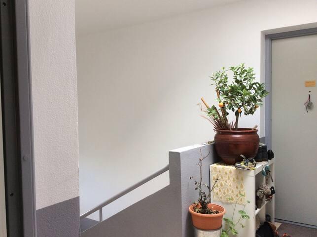 Joli App 2 cham. belle vue tr calme - Saint-Quentin-sur-Isère - Apartment