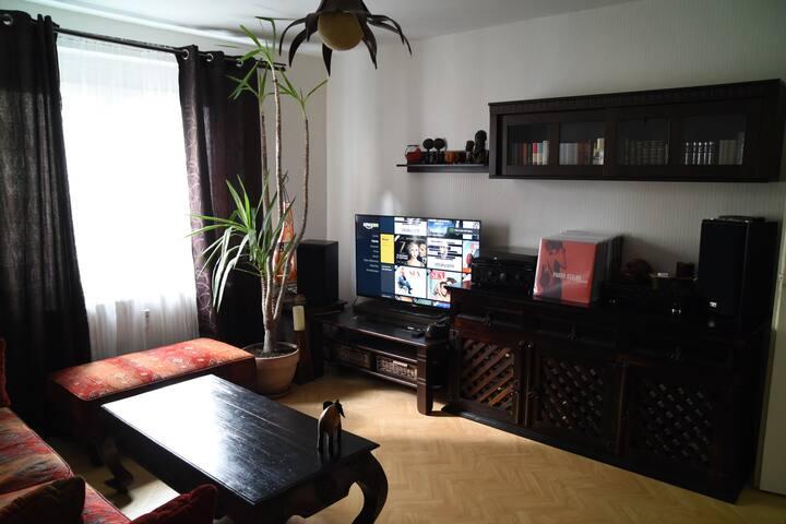 2 Zimmer mit Bibliothek und TV in Top-Lage