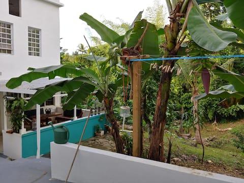 Tranquilidad Total Patio / Casa de Latorre