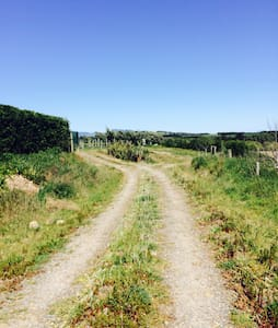Relaxing private country retreat. - Martinborough - House