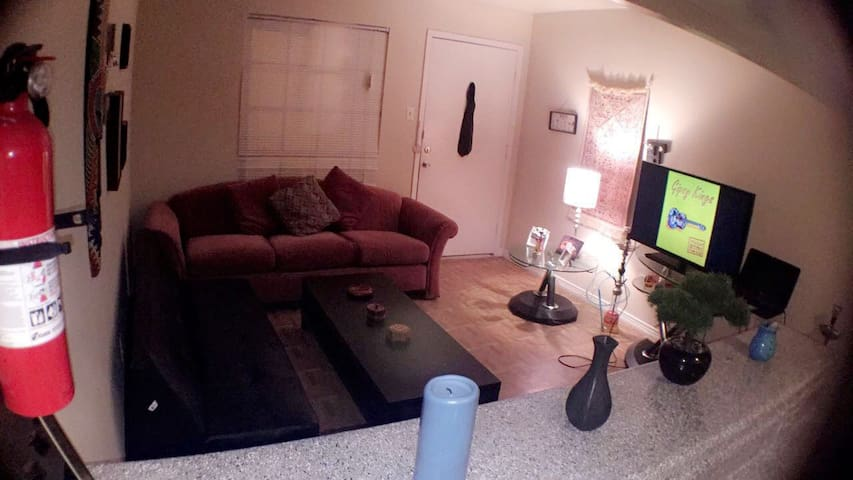 Cozy Apt. 5min to Super Bowl 51, Free parking - Houston - Appartement