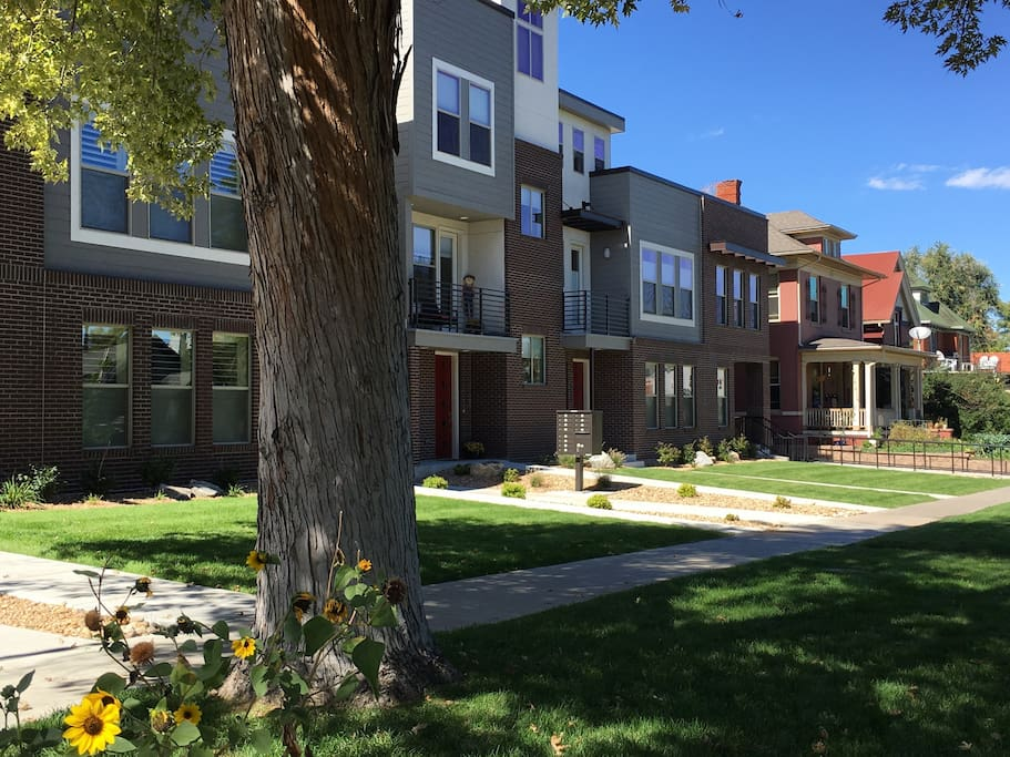 Picture of townhome complex