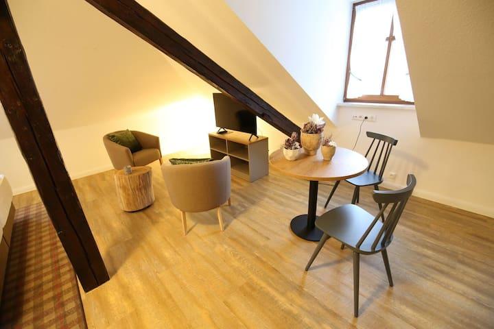 Apartment Schatzenstein (26m²)