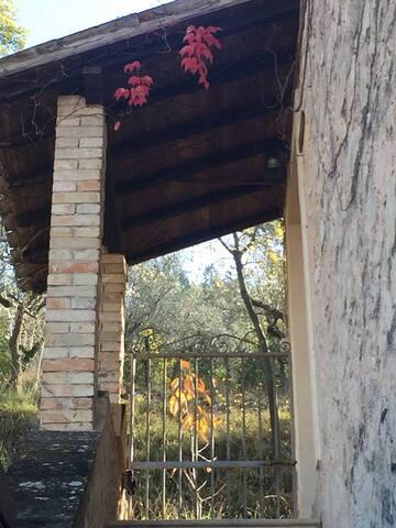 Villa Silvana - Trevi - Bed & Breakfast