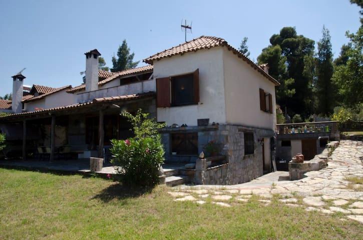 EXTRAORDINARY TRADITIONAL VILLA - Kriopigi - Villa