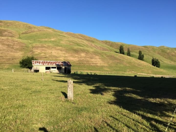 Savana Estate  - Country Chalet No. 3