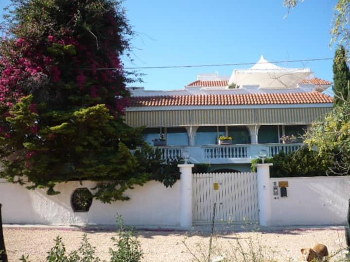 Appartamento Rosa in villa a Punta Prosciutto