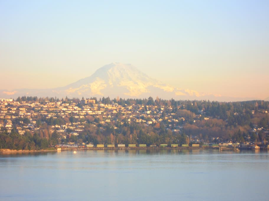 View of Mt. Rainier