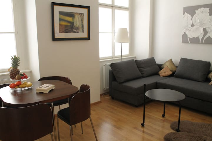 Cosy BOUTIQUE Apartment in the Heart of Vienna