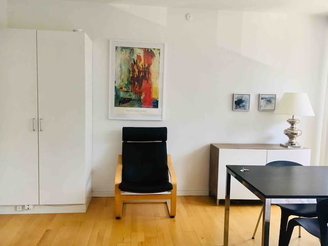 Newly renovated apartment right in City