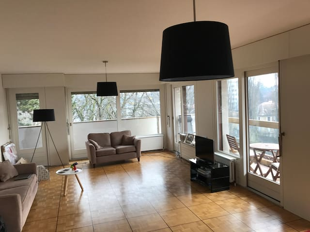 Luxury flat in posh location , geneva - Cologny - Leilighet